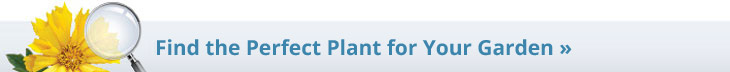 Use Our Plant Finder