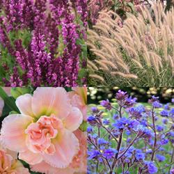 Expandable Garden Bookends