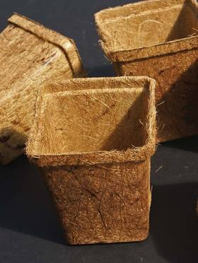 6 Coco Pot Biodegradable coconut fiber pots