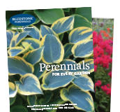 Bluestone Perennials Catalog